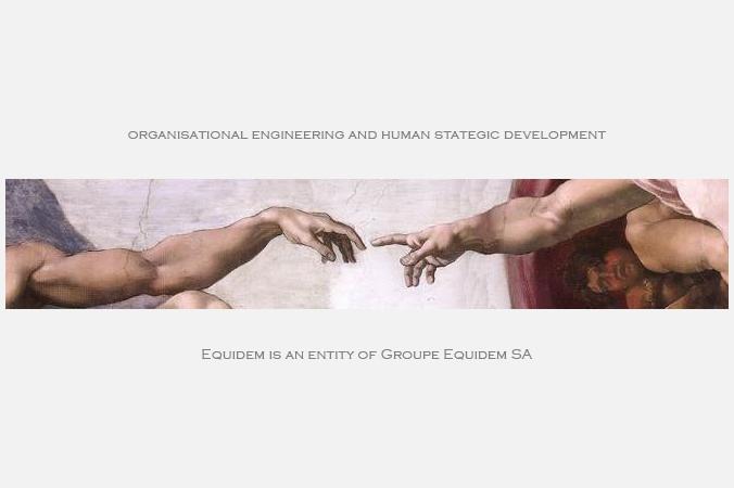 Organisational engineering and human strategic development